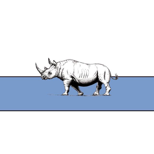 Rhinoceros EP Artwork - No Name